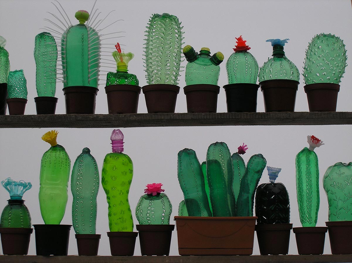 A series of cacti made out of recycled plastic bottles