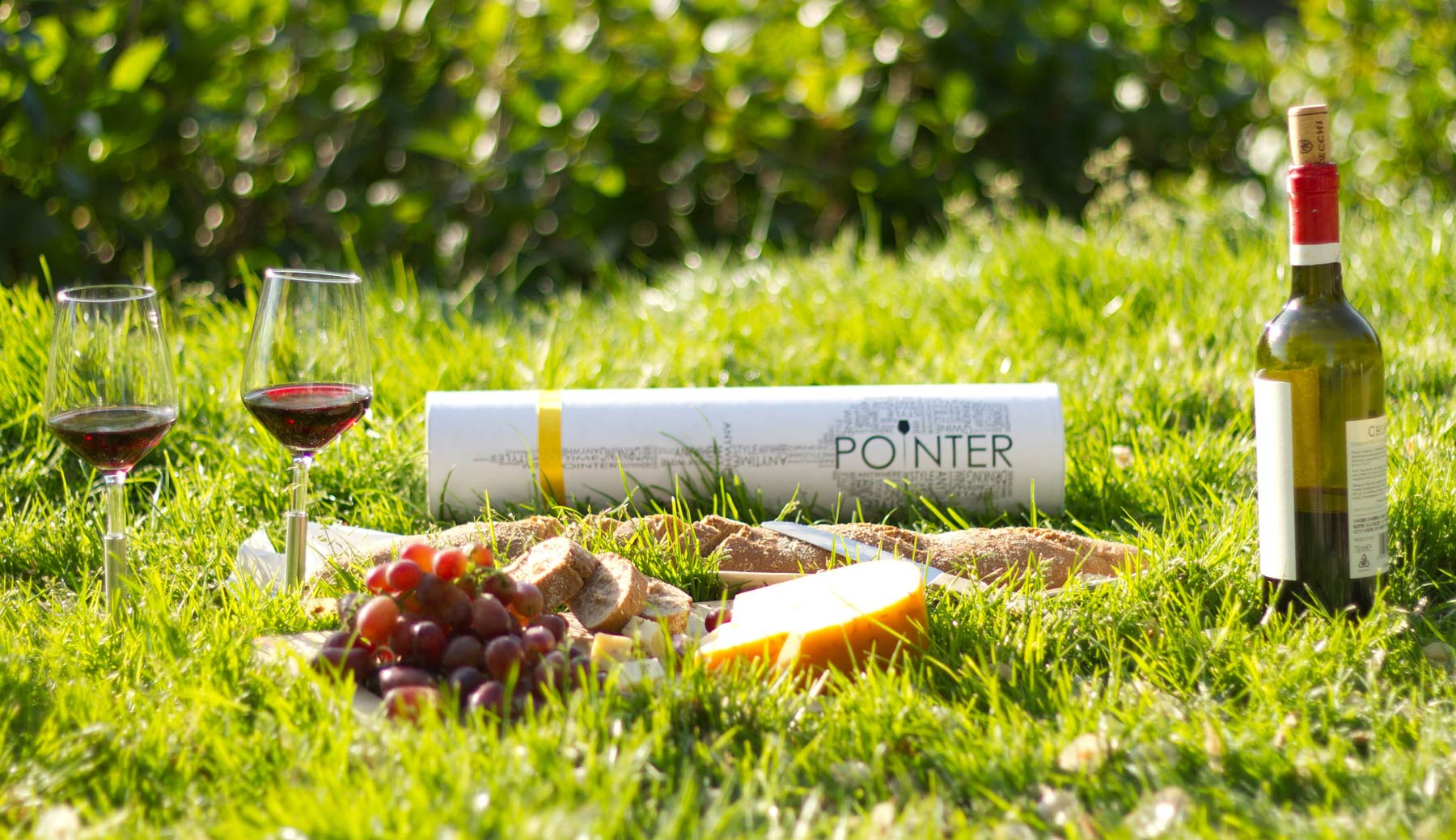Photo of a picnic on the grass. 2 glasses of wine are planted on the ground.