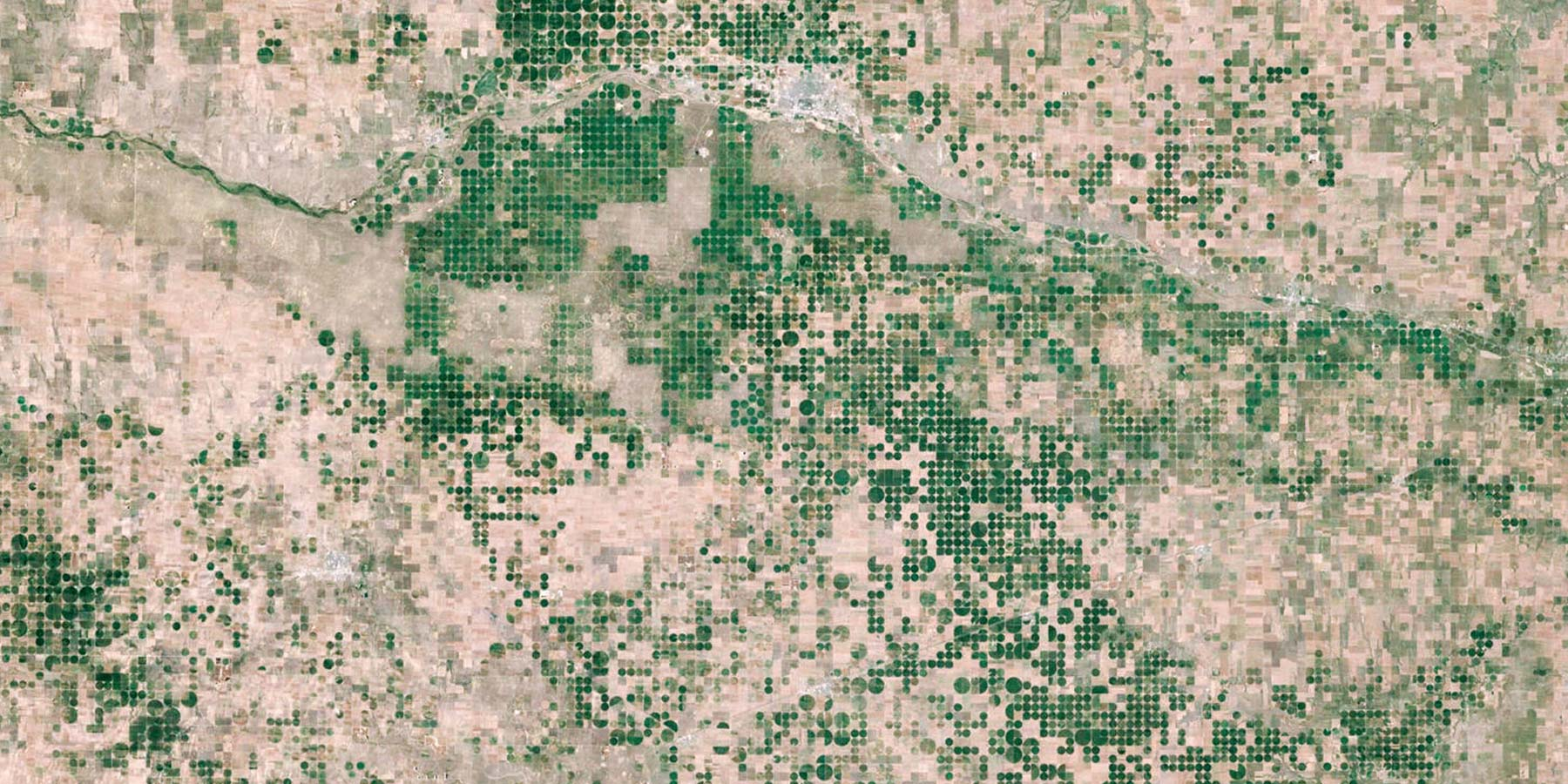 Satellite view of cultivated fields