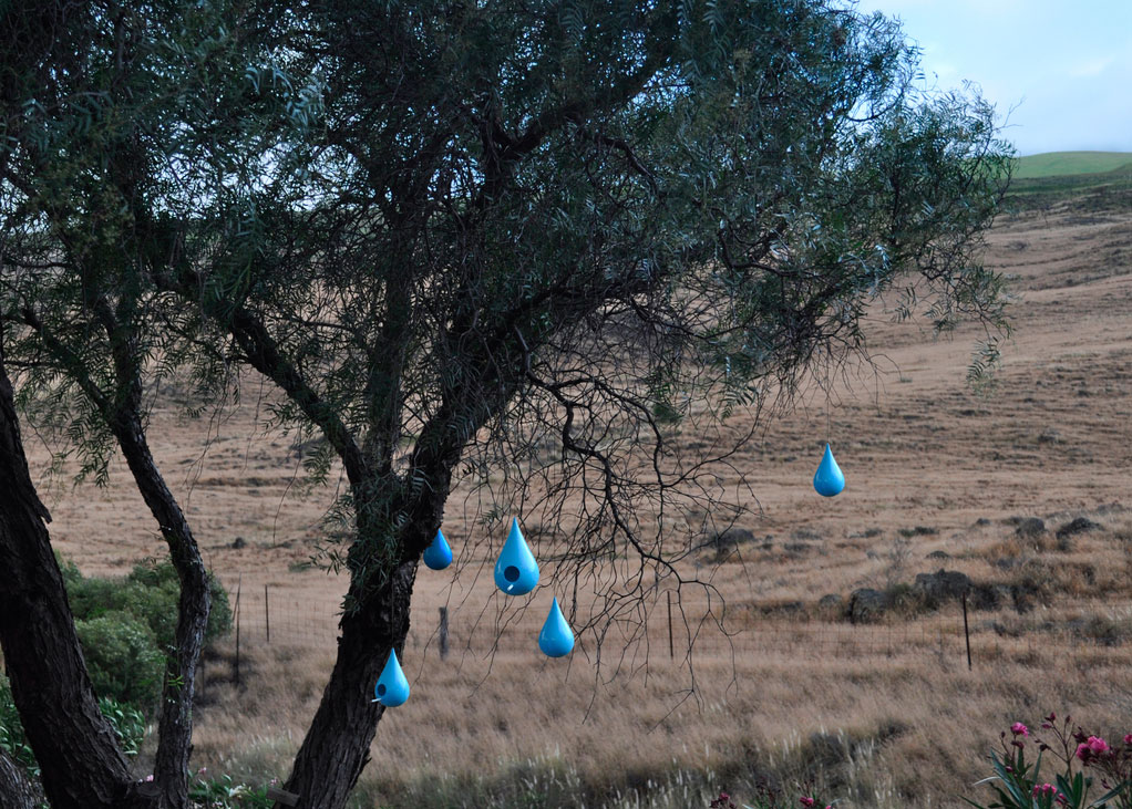 Picture of a tree with several little blue bird houses in the shape of drops hanging from its branches.